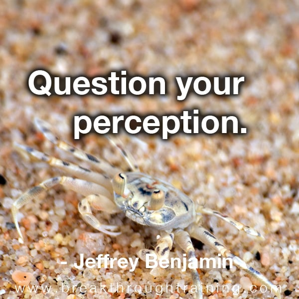 Question your perception.