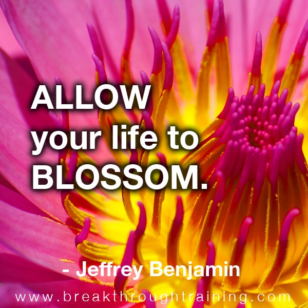Allow your life to blossom.