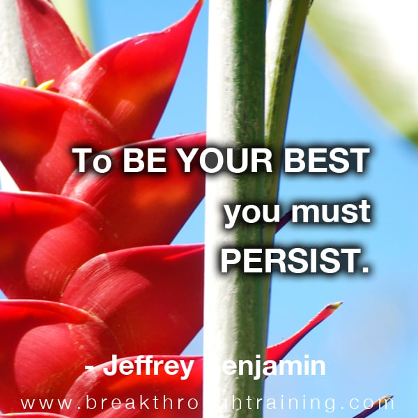 To be your best you must persist.